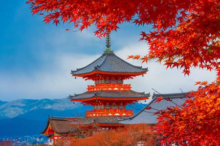 Autumn colors in Japan Stock fotó
