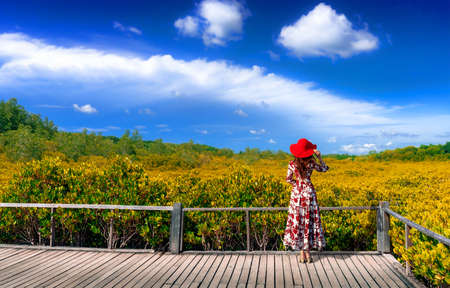 Asian women standing on wooden bridge at Mangrove forest ecotourism Thung Prong Thong, Rayong Province, Thailand Stok Fotoğraf