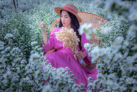 Beautiful Thai woman sitting among white cutters fields in Chiang Mai, Thailand Imagens