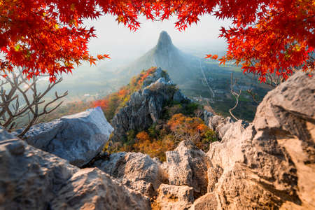 High mountains in the plains and fields in the morning, the misty and beautiful maple leaf in Khao No Nakhon Sawan Thailand