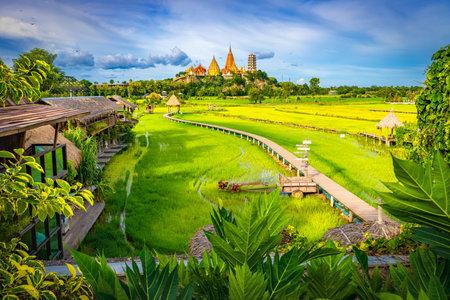 Wat Tham Sua temple is a rice field around in Kanchanaburi, Thailand Foto de archivo