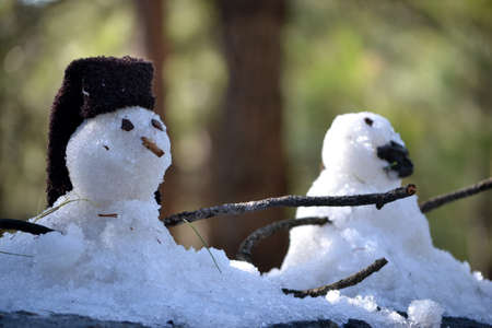 Two snowmen photo