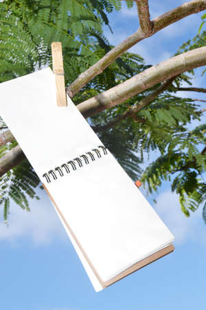 mention: Notebook hanging from a tree