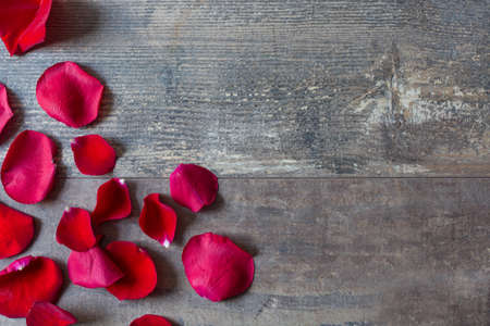 romantic flowers: Red petals on wood Stock Photo