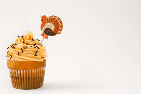 Thanksgiving cupcakes isolated on white background