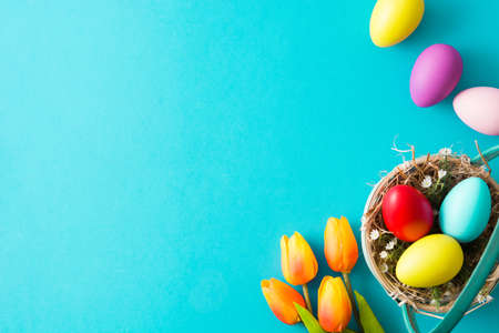 Colorful easter eggs in basket and tulips on blue background. Top view. Copyspace