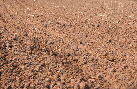 Cultivated gray dried soil, nature background