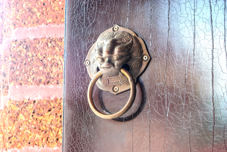 bronzy: lion head doorknocker