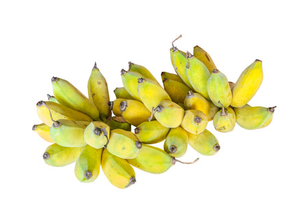 Cultivated banana in Thailand photo