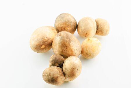straw mushroom isolated on white background, food ingredient photo