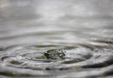 beautiful fresh water drops in fresh natural
