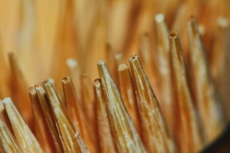 many close up toothpick for abstract and texture background Stock Photo