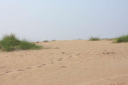 dune: dune sand Stock Photo