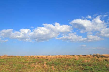 Fields blue sky Beautiful sunny day Stock Photo