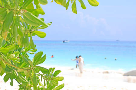 Tourists are relaxing at Beach on tachai island Stock Photo