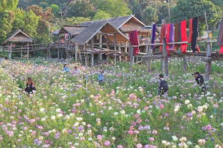 Tourists visiting the flower garden at thailand.