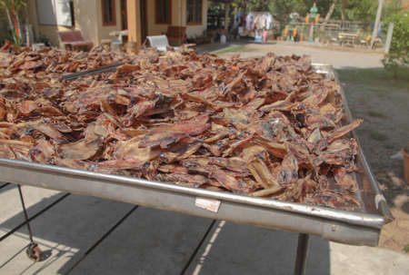 Dried squid is seafood Processing  ,Traditional way to produce dried shrimp by drying under sunlight.