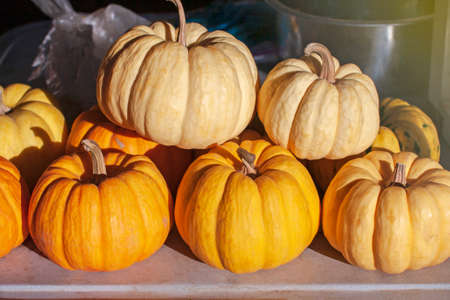small pumpkins on a wooden table Stock Photo