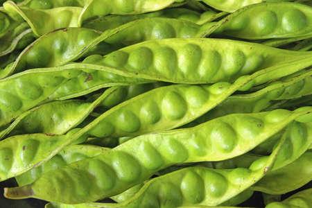 Petai or Sataw of the genus Parkia Speciosa in bucnh