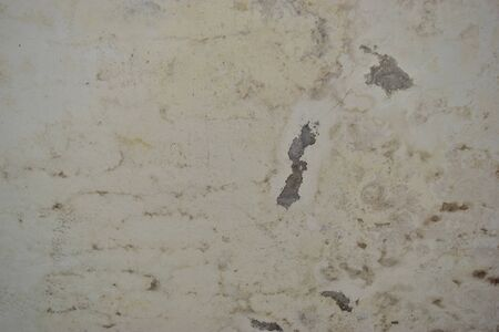 damp: Background damp moldy walls and peeling paint.
