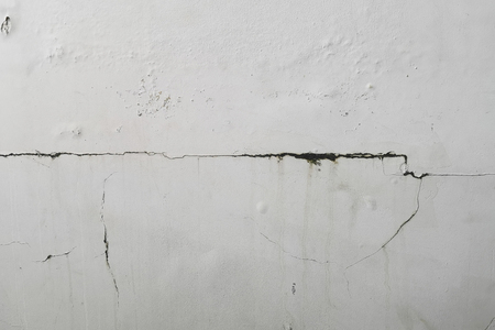 Excessive moisture can cause mold and peeling paint wall , such as rainwater leaks or water leaks .