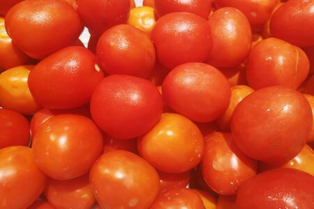 Top view of fresh red organic tomatoes Often have traces of insects and sometimes unattractive skin.