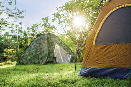 Camping tent of tourist near forest with beautiful sunrise light in morning, Selective focus.