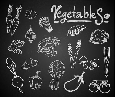 edible mushroom: Set of chalk hand drawing vegetables on blackboard