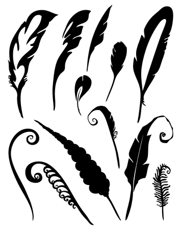 Vector group of feather on white background Çizim