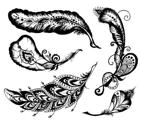 Hand getrokken veren ingesteld op een witte achtergrond. doodle vector Set van etnische veren.