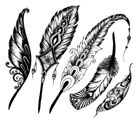 Hand drawn feathers set on white background. doodle vector Set of ethnic feathers.