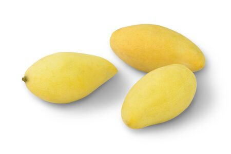 luscious: Golden sweet mangoes in Thailand Stock Photo
