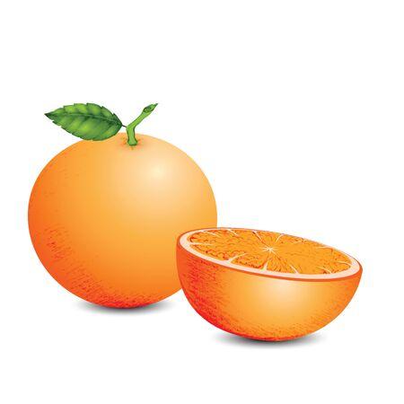 mandarin orange: The sweet mandarin orange