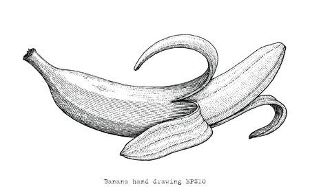 Banana hand drawing engraving style,Banana black and white clipart Standard-Bild - 121826710