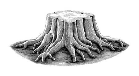 Stump black and white sketch engraving style isolate on white background