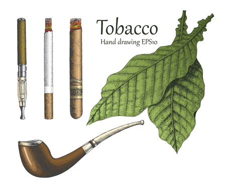 Tobacco collection hand drawing vintage style