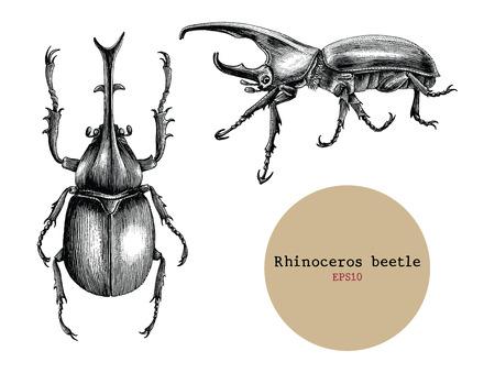 Rhinoceros beetle hand drawing vintage engraving illustration,Drawing design for tattoo Stockfoto - 102872878