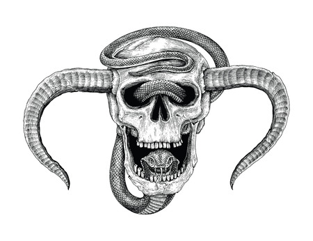 Snake with human skull hand drawing vintage engraving illustration for tattoo Standard-Bild - 121826750