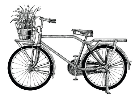 Vintage bicycle and flower pot hand drawing clip art isolated on white bakground Illustration