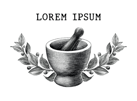 Mortar and pestle with herbs frame vintage engraving illustration isolated on white background,Logo of pharmacy and medicine