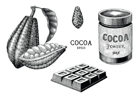 Cocoa plant and product hand draw vintage engraving style isolated on white background Standard-Bild - 116950525