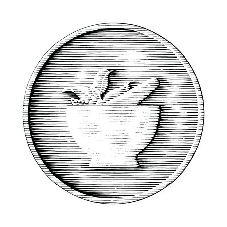 Mortar and pestle hand drawing in coin vintage style black and white clipart isolated on white background
