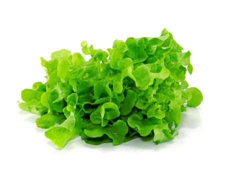 fresh green lettuce leaves isolated on white Stock Photo