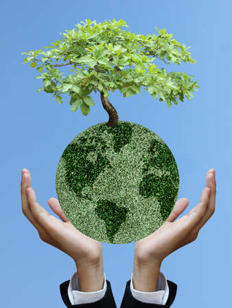 Business hand holding world of tree