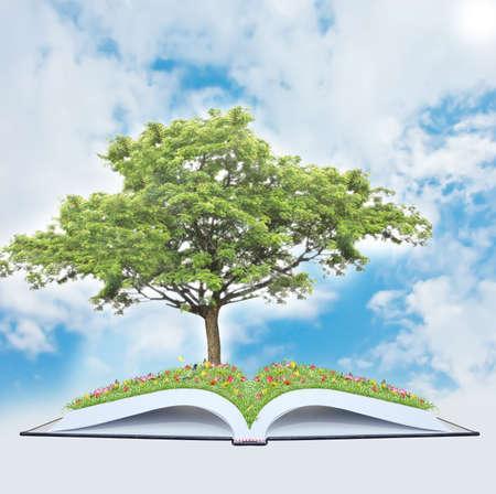 Tree on book photo