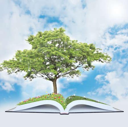 Tree of wisdom Stock Photo