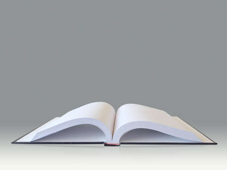 Open book Stock Photo - 12685591