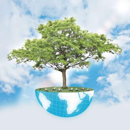 energy efficient: Tree of wisdom Stock Photo