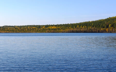 lake and autumn wood in the distance photo