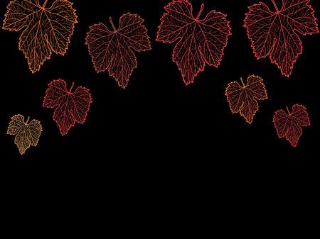 grape leaves: grape leaves isolated on black Illustration